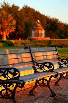 ...♥ Ornate Bench, Waterfront Park, #Charleston, S #CAROLINA