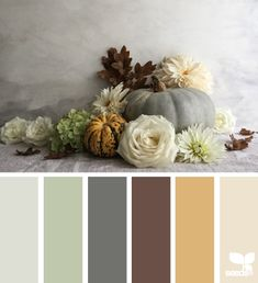 Living room colors palette design seeds New ideas Color Palette For Home, Colour Pallette, Color Palate, Autumn Color Palette, Living Room Color Schemes, Colour Schemes, Color Combos, Color Patterns, Design Seeds