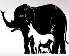 7-21-760×500 Moose Art, Animals, Animales, Animaux, Animal, Animais