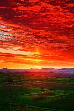 Craziest Sunrise In The Palouse. The Palouse is a region of the northwestern United States, encompassing parts of southeastern Washington and north central Idaho. Beautiful World, Beautiful Places, Beautiful Beautiful, Cool Pictures, Beautiful Pictures, Amazing Sunsets, All Nature, Amazing Nature, Beautiful Sunrise