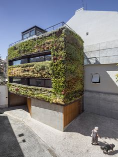 This narrow townhouse in Lisbon has bushy plants all over its body and a swimming pool on its roof
