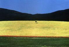 FRANCO FONTANA Untitled, South Dakota, USA, 1990