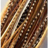 """4""""-6"""" Natural Mix Feather Hair Extension Made of Salon Quality Feathers http://www.amazon.com/dp/B005KSR33Y/ref=cm_sw_r_pi_dp_Tlq8qb0ZH0W0T"""