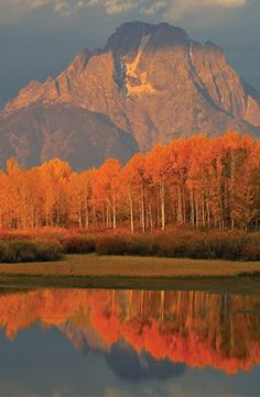 Autumn in Jackson Hole, Wyoming