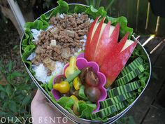 bento ideas for lunches