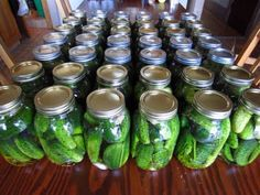 Culinary Propaganda: Pickle Yourself I will show you how to make brine-fermented dill pickles, the superior way to preserve cucumbers Easy Weight Loss, Healthy Weight Loss, How To Lose Weight Fast, Healthy Options, Easy Healthy Recipes, How To Make Brine, Kosher Dill Pickles, Low Calorie Snacks