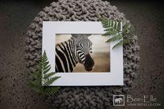African Wildlife Photography by Bee-Elle. Gift-sized prints at $25. Delivers worldwide. #zebra #africa #wildlife #africanwildlife #africanwildlifephotography #wildlifephotography #gift #prints #art
