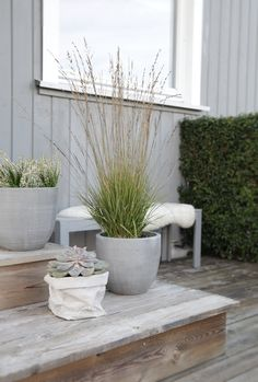 All Gardenista garden design and outdoors inspiration stories in one place—from garden tours and expert advice to product roundups. Scandi Garden, Scandinavian Garden, Scandinavian Design, Outdoor Living Areas, Outdoor Rooms, Outdoor Gardens, Patio Design, Garden Design, Dream Garden