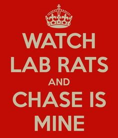 WATCH LAB RATS AND CHASE IS MINE! you better believe haha jk he already has a girlfriend