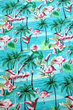Custom Cool 35 Inches Set Pack of 8 Square Grip Texture Drink Cup Coasters Made of Flexible Poly Fabric w Rubber Bottom Bold Wildlife Flamingo Birds Pattern Colorful Teal White Pink * See this great product. Flamingo Bird, Flamingo Print, Pink Flamingos, Flamingo Dress, Tropical Fabric, Tropical Pattern, Church Pictures, Nature Pictures, Decoupage