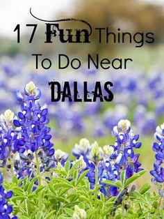 17 #Fun Things To Do Near #DALLAS | #Texas www.SueKrider.com