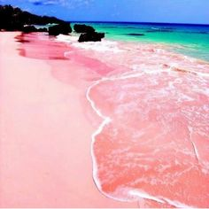 Pink Sands Beach on Harbour Island Bahamas