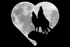 Framed Print - Wolves Howling At A Shaped Moon (Gothic Wolf Picture Art) Wolf Silhouette, Canvas Silhouette, Anime Wolf, Wolf Howling At Moon, Howling Wolf Tattoo, Wolf Artwork, Wolf Painting, Image Chat, Wolf Wallpaper