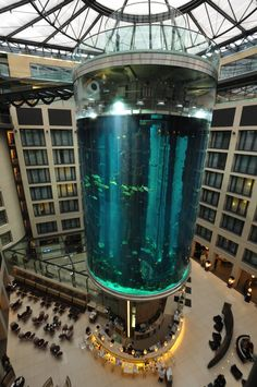 AquaDom is a huge size of aquarium in Berlin, Germany. It's about 25 meter tall cylindrical acrylic glass aquarium and has a built-in transparent elevator. It is located at the Radisson Blu Hotel in Berlin-Mitte. Hotel Berlin, Berlin Mitte, Berlin Germany, Munich, Glass Aquarium, Aquarium Fish, Fish Aquariums, Aquarium Design, Saltwater Aquarium