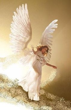 Angel. The wings.                                                                                                                                                                                 Plus