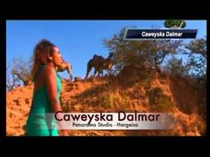 Interesting Oromo music song in appreciation of beautiful ancient Oromo culture, Democratic (Gadaa) System, the parallel Women institution and the Cushitic (khemetic) root of the Oromo.  Odaa is the national official tree.   http://www.youtube.com/watch?v=wHuypnitFYk
