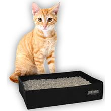 Great idea for our cats emergency kit - in case of evacuation