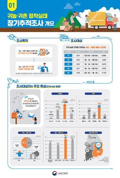Info Graphic Design, Presentation Design, Instagram Feed, Infographic, Banner, Layout, Chart, Poster, Crowns