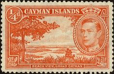 Cayman Islands Scott 100 Stamp MNH-Beach View postage stamp-Mint Cayman Islands stamp for sale Crown Colony, Postage Stamp Collection, British Indian Ocean Territory, Pitcairn Islands, Old Newspaper, Grand Cayman, Vintage Stamps, King George, Cayman Islands
