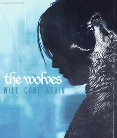The wolves will come again ~ House Stark