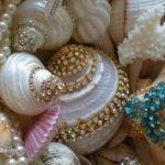 Deniz Kabuğu Boyama Örnekleri 23