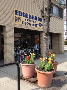#Sport #Bikes #Cycle #EdgebrookCycle Sport Bikes, Sports, Plants, Sportbikes, Sport, Flora, Plant, Planting