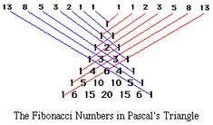 Illustration of Pascal's triangle with diagonals added to produce Fibonacci sezuence