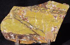 Stone Canyon Agate Jasper Slab A   ― Miners Gallery