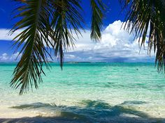 Freeport Bahamas Cruise Port. Shore Excursions, Food & Dining, Attractions & more in Freeport | Cruise Port Advisor