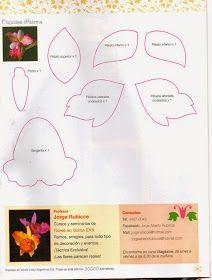 Ako vyrobiť ruže v penivý