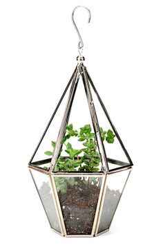 Apartment Makeover! 16 Ways To Spruce Up Your Home, Urban Outfitters Faceted Hanging Terrarium, $29, available at Urban Outfitters.