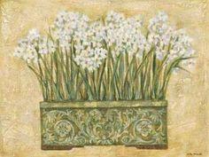 Cuadro White Narcissus
