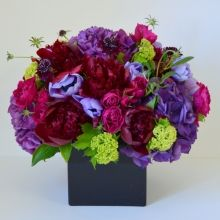 Online Florist with Same Day Delivery in NYC. Seasonal Bouquet - Fresh Combination of Seasonal Flowers arranged in modern square vase. Visit http://www.gabrielawakeham.com/product_detail.php?id=115 or call us +1(917)962-0033 to order your bouquet today.
