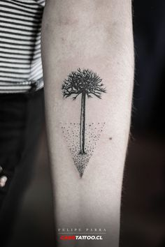 araucaria New Tattoos, Body Art Tattoos, Small Tattoos, Tatoos, Cat Outline Tattoo, Stick And Poke, Little Tattoos, Tatting, Piercings