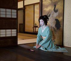 geiko toshimana #kyoto#geimaiko#miyagawacho