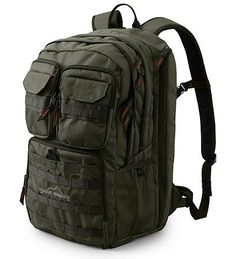 Lots of function and great price (!) from Eddie Bauer (Backpack)