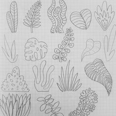 Shapes in nature Plant Sketches, Nature Plants, Foliage Plants, Zentangle, Pencil, Nature Illustration, Leaves, Draw, Garden