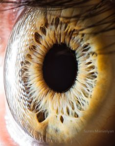 Your beautiful eyes by Suren Manvelyan, via Behance