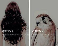 athena (Ἀθηνᾶ) - greek goddess of wisdom & warfare Athena Greek Goddess, Athena Goddess Of Wisdom, Goddess Names, Minerva Goddess, Greek Gods And Goddesses, Greek And Roman Mythology, Percy Jackson, Fantasy Names, Religion