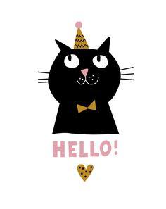 Hello_cat | Flickr - Photo Sharing!