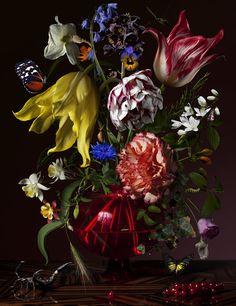 Still life - Stilleven, Bas Meeuws, 2012