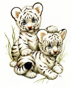 White tiger cubs - animated gif pictures and postcards Baby Animal Drawings, Cute Drawings, White Tiger Cubs, Baby Animals, Cute Animals, Tiger Art, Cute Animal Pictures, Gif Pictures, Cute Images