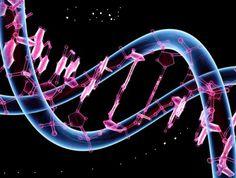 Genoma Humano recuperado en África