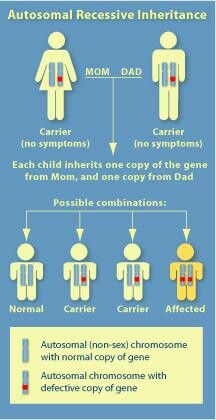 """Cystic Fibrosis: I get the question """"how did he get it?"""" a lot ... Maybe this will help people understand!"""
