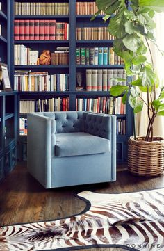 cozy royal blue library shelves before and after actress sasha alexanders european inspired l home via - Bookshelves For Bookstores