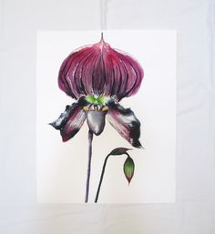 Orchid Painting, flower watercolor, 16X20 inches, purple, green