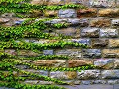 Landscape edging wall cladding