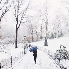 Central Park / photo by Chris Ozer Home sweet home...New York