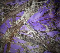 Fabric by the Yard-Elegant True Timber Purple Camouflage Bridal Satin by-TheMomentWeddingBoutique