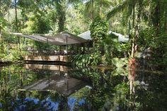 Australie - A seulement quarante minutes de Port Douglas, le Daintree Eco Lodge & Spa est isolé dans l'une des plus anciennes forêts du monde. Vous logerez près du sol ou perché dans un arbre, mais où que vous soyez, l'atmosphère sera dépaysante. C'est un endroit superbe pour partir à la découverte du nord de l'Australie et de la Grand Barrière de Corail.
